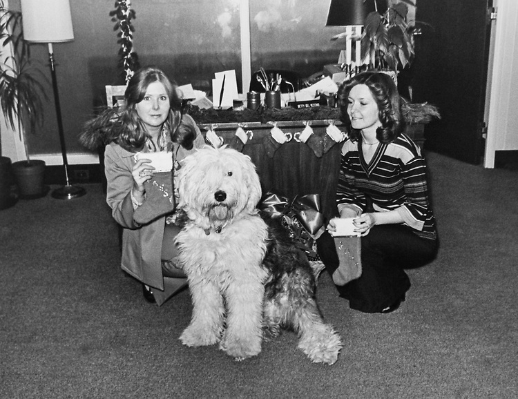 Staff members decorating the office of Rep. John E. Moss, D-Calif., around Christmas. Pet dog sitting besides them. (Photo by Dev O'Neill/CQ Roll Call via Getty Images)