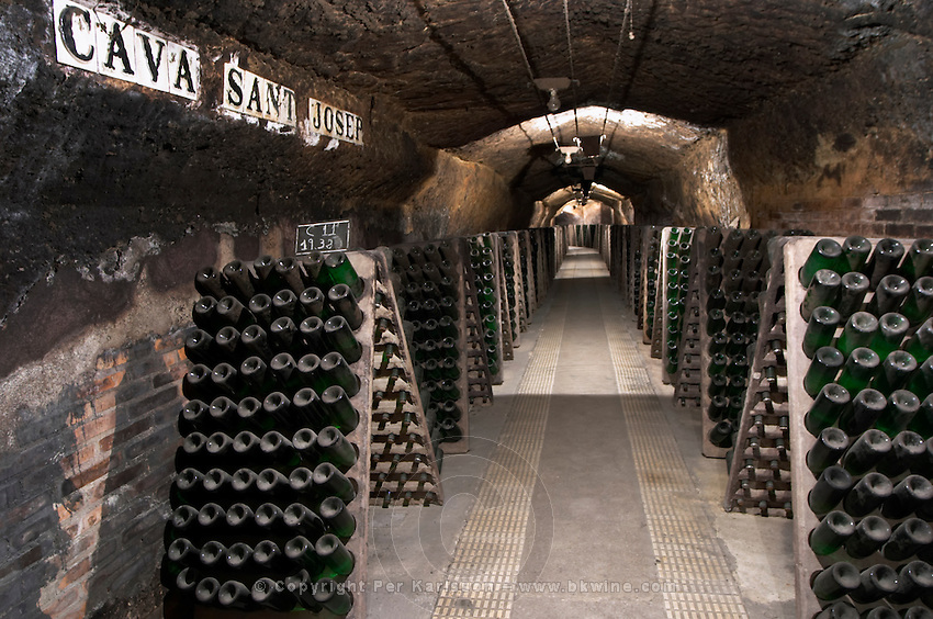Bottles aging in the cellar. Codorniu, Sant Sadurni d'Anoia, Penedes, Catalonia, Spain