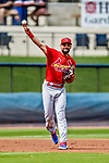 26 February 2019: St. Louis Cardinals infielder Matt Carpenter gets the third out in the bottom of the first inning of a Spring Training game against the Washington Nationals at the Ballpark of the Palm Beaches in West Palm Beach, Florida. The Cardinals defeated the Nationals 6-1 in Grapefruit League play. Mandatory Credit: Ed Wolfstein Photo *** RAW (NEF) Image File Available ***
