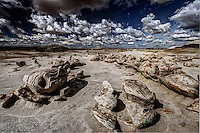 A group of unusual, eroded rock in the Egg Garden section of the Bisti Wilderness of northwestern New Mexico.