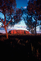 Ayers Rock Uluru National Park, Central Australia