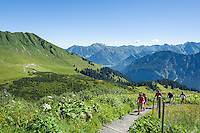 Germany, Bavaria, Upper Allgaeu, Oberstdorf: hikers heading for upper station of Fellhorn cable car, at background the Allgaeu Alps | Deutschland, Bayern, Oberallgaeu, oberhalb Oberstdorf: Wanderer auf dem Weg zur Gipfelstation der Fellhornbahn vor den Allgaeuer Alpen
