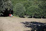 AS FAR AS THE EYE CAN HEAR....Conception et chorégraphie : PISANI Martine..avec : ..GALLEGO Nilo..KOOIJMAN Theo..RIVIERE Ludovic..Compagnie : Compagnie Martine Pisani..Le 16/06/2012..Lieu : Parc du Duché..Ville : Uzès..© Laurent Paillier / photosdedanse.com..All rights reserved