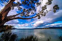 190606 Bay Of Plenty Regional Council - Rotorua