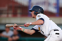 Burlington Bees first baseman Nick Flair (36) squares to bunt during a game against the Clinton LumberKings on August 20, 2015 at Community Field in Burlington, Iowa.  Burlington defeated Clinton 3-2.  (Mike Janes/Four Seam Images)