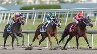 HALLANDALE BEACH, FL - JAN 06: Piven #3 with Jose L. Ortiz in the irons prepares to overtake Aequor #2 and Reed Kan #1 on the way to winning The $75,000 Limehouse Stakes for trainer Kevin Attard at Gulfstream Park on January 6, 2018 in Hallandale Beach, Florida. (Photo by Bob Aaron/Eclipse Sportswire/Getty Images)