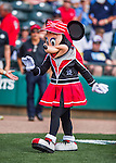 14 March 2016: Walt Disney's Minnie Mouse entertains the fans prior to a Spring Training pre-season game between the Tampa Bay Rays and the Atlanta Braves at Champion Stadium in the ESPN Wide World of Sports Complex in Kissimmee, Florida. The Braves shut out the Rays 5-0 in Grapefruit League play. Mandatory Credit: Ed Wolfstein Photo *** RAW (NEF) Image File Available ***