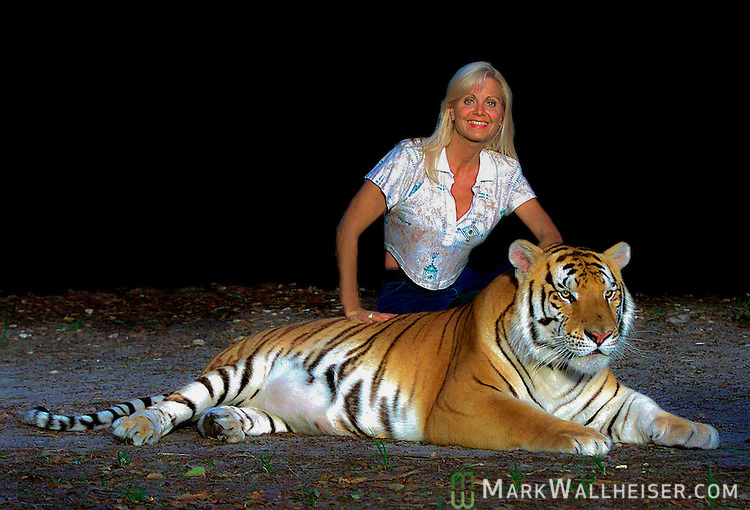 Gloria Johnson with T.J, an 500 pound breading male Siberian tiger with the white gene.  She trains, walks and works with the tigers at a breading facility, Savage Kingdom, in Bushnell.