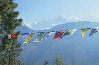 Dhauladhar mountain range from the Lingkhor with Tibetan prayer flags.