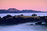 Coastal Fog, hills, and trees at sunrise, Cachaqua Road, above Carmel Valley, Monterey County, California