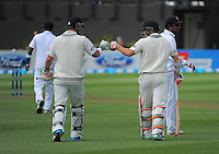 Hamish Rutherford and Tom Latham walk out for the start of during day one of the 2nd cricket test match between the New Zealand Black Caps and Sri Lanka at the Hawkins Basin Reserve, Wellington, New Zealand on Saturday, 3 February 2015. Photo: Dave Lintott / lintottphoto.co.nz