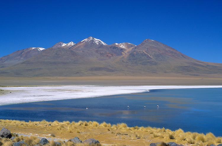 Laguna. Lipez Sur, Bolivia, 1999.