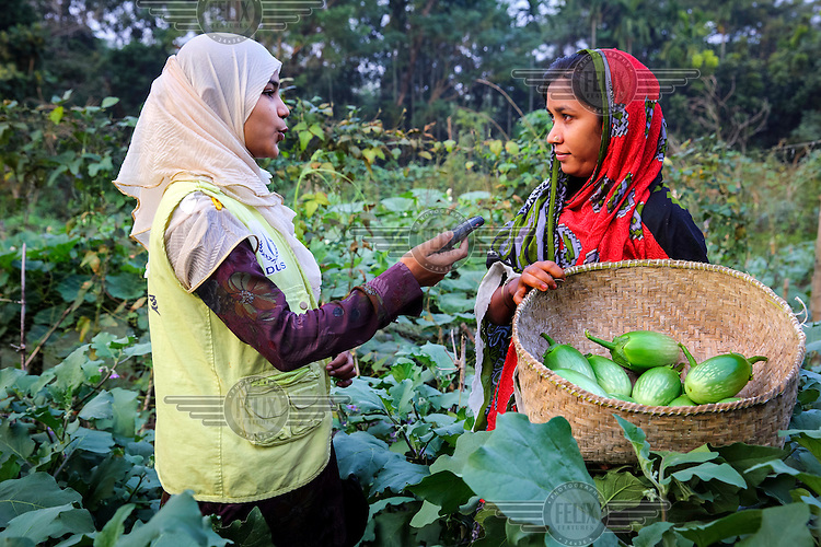 Radio Jokey of DUS'ss Radio Sagor Dwip interviewing Laila Begum in her market garden which she set up with help from NGO Dwip Unnayan Songstha (DUS).