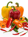 Variety of sweet red, yellow, orange peppers, Jalapeno, Cubanelle, Thai peppers, Scotch Bonnet pepper, mini sweet peppers. Food still life isolated on white background.