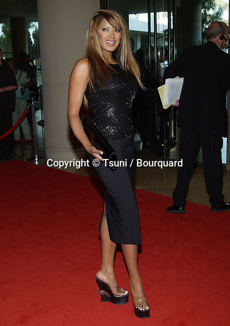 "Traci Bingham (Baywatch) at the "" 5th Annual Family Television Awards "" at the Bever;ly Hilton in Los Angeles. August 14, 2003."
