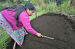 Teresa Diaz prepares to plant seeds in a shared vegetable garden in San Luis, a small Mam-speaking Maya village in Comitancillo, Guatemala. Women in the community have worked together on several agricultural and animal raising projects with help from the Maya Mam Association for Investigation and Development (AMMID).
