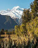 Mt. Tasman of Southern Alps and Lake Matheson, Westland Tai Poutini National Park, West Coast, UNESCO World Heritage Area, South Westland, New Zealand, NZ