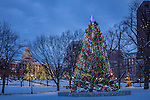 December snow on Boston Common, Boston, Massachusetts, USA