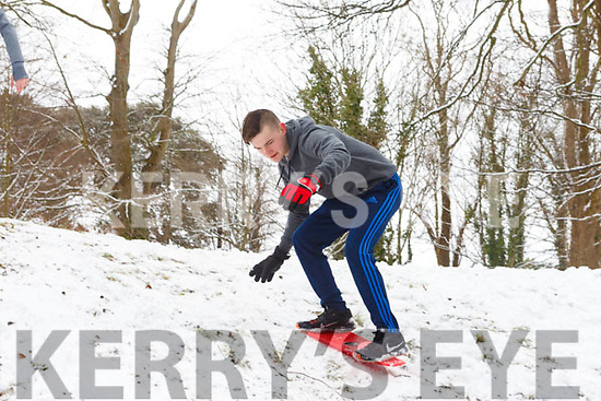 Sean Hanly from Tralee trying to perfect his snowboarding in the Town park on Friday morning last.