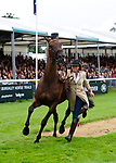 30th August 2017. Lynn Symansky (USA) riding Donner during the First Horse Inspection of the 2017 Burghley Horse Trials, Stamford, United Kingdom. Jonathan Clarke/JPC Images