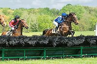 21 April 2012:  El Season and Danielle Hodsdon win the Sport of Kings Maiden Hurdle at Middleburg Spring Races at Glenwood Park in Middleburg, Va. Manacor and Xavier Aizpuru finished second.  El Season is owned by William Pape and trained by Jonathan Sheppard.   Susan M. Carter/Eclipse Sportswire