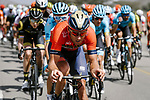 The peloton with Antonio Nibali (ITA) Bahrain-Merida on the front during Stage 5 of the 10th Tour of Oman 2019, running 152km from Samayil to Jabal Al Akhdhar (Green Mountain), Oman. 20th February 2019.<br /> Picture: ASO/P. Ballet | Cyclefile<br /> All photos usage must carry mandatory copyright credit (&copy; Cyclefile | ASO/P. Ballet)