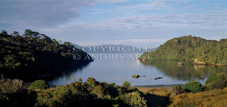 Deep Bay. Stewart Island National Park. (Rakiura) New Zealand.