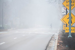 Sighting in heavy fog. Photo by Kevin Bain/University Communications Photography