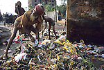 Rubbish collectors sift through the public waste in Dacca the capital of Bangladesh.