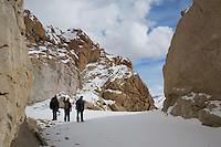 Searching for Snow Leopards in Ladakh