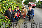 Ballinorig residents pictured on Monday near the road damage in the area after the flooding at the weekend, from left: Eileen Curley, Cathal Foley, Angela McLarnon and Sean O'Mahony..