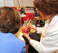 Carol Spiegel (right), the director of clinical microbiology at UW Hospital, holds the antibiotic culture that was used for this illness. Increasing strengths of three antibiotics are dotted along the white strips, and the bacteria is cultured on the plate. The strength and combination of antibiotic can then be determined by where the bacteria are killed and do not grow.