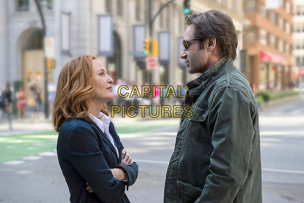 The X-Files (2016)<br /> (Season 1, Episode 1, &quot;My Struggle&quot;)<br /> Gillian Anderson as Dana Scully and David Duchovny as Fox Mulder<br /> *Filmstill - Editorial Use Only*<br /> CAP/KFS<br /> Image supplied by Capital Pictures