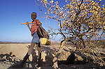 Gold mining ( dry panning) on the plains of Northern Turkana. Children do much of the hard labour and panning