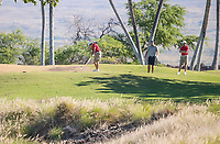 Waikoloa, HI. - February 1, 2018: The Stanford Men's Golf Team competes at the 2018 Amir Ari Intercollegiate Golf Tournament on the Kings Course at Waikoloa Golf Club.