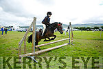 Enjoying the Blennerville Pony Show on Sunday were Grace Foley with Mr. Mistoffelees