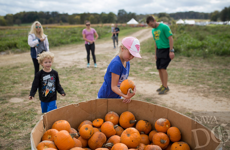 NWA Democrat-Gazette/CHARLIE KAIJO Karly Frakes, 8 of Bentonville picks out a pumpkin on Saturday, October 21, 2017 at the Ozark Corn Maze in Cave Springs. The Ozark Corn Maze featured three separate corn mazes, a hay maze, corn cannon, pumpkin sling shot, barrel train, children's play area, miniature donkeys, corn pool, a 10-acre pumpkin patch, concessions and a free hayride.