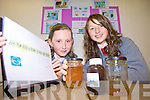 HOW EFFECTIVE IS HONEY: Claire English and Zoe Hyde from the Intermediate Secondary School, Killorglin explore Just how good is honey for your sore throat? at Scifest in ITT.