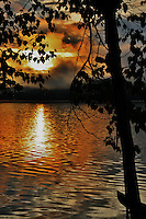 golden circle of light