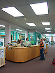 Children and people using library