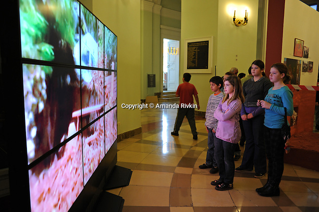 Schoolchildren from the Geza Gardonyi Primary School in Devecser, Hungary view a video of aerial shots of the destruction in their village as part of an exhibition dedicated to the industrial accident that ruined many of their homes and which features their original artwork at the Hungarian National Museum in Budapest, Hungary on November 26, 2010.  On October 4, 2010, a ruptured industrial reservoir sent a torrent of toxic red alumina sludge gushing through their village, Devecser, and several surrounding villages, killing ten, injuring hundreds, and leaving several families homeless.