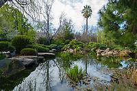 View of the Adelaide Himeji Garden in Adelaide, Australia.