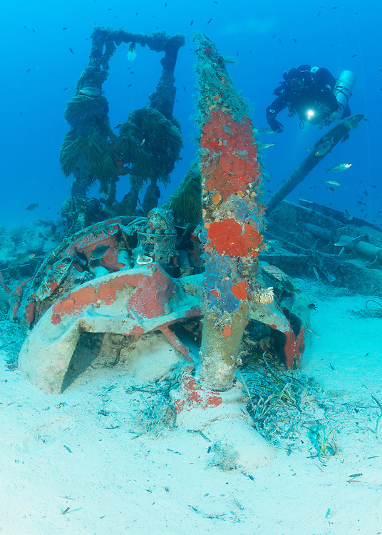 The wreck of a Royal Air Force Bristol Beaufighter, which lies at 40 metres depth off the coast of Malta. The aircraft lies upside down and crashed in World War 2