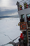 A polar bear approaches the ship, The National Geographic Explorer, in the pack ice off of Svalbard, Norway