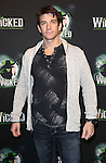 Andy Karl  attending the 10th Anniversary Celebration Party for 'Wicked'  at the Edison Ballroom on October 30, 2013  in New York City.