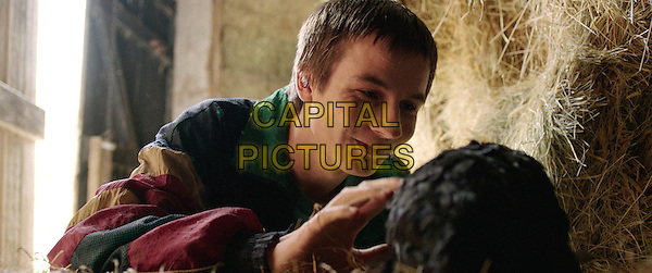 Scott Chambers<br /> in Chicken (2015) <br /> *Filmstill - Editorial Use Only*<br /> CAP/NFS<br /> Image supplied by Capital Pictures