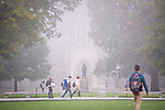 The residential quad of west campus on a foggy morning in October.