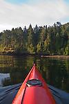 San Juan Islands, Sea Kayak, Cypress Island, Rosario Strait, Puget Sound, Washington State, Pacific Northwest, USA, coastal conifer forest,