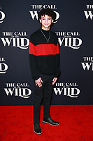 HOLLYWOOD, CA - FEBRUARY 13; Faly Rakotohavana at The Call Of The Wild World Premiere on February 13, 2020 at El Capitan Theater in Hollywood, California. Credit: Tony Forte/MediaPunch