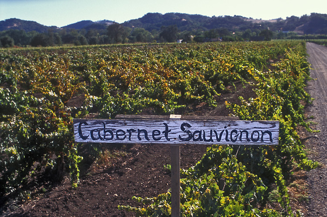 Sign marks vineyard in Alexander valley of Sonoma county